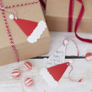Kerst Santa & Friends